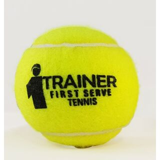ARP FST Trainer (ehem. ARP TE-S Tennisschule) Tennisball drucklos